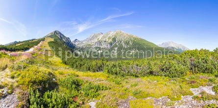 Nature: Panoramic view of High Tatras mountains Slovakia #07119