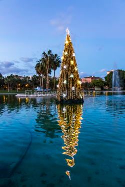 Holidays: Illuminated decorated New Year tree reflected in the water #07130
