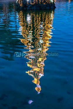 Holidays: Illuminated decorated New Year tree reflected in the water #07132