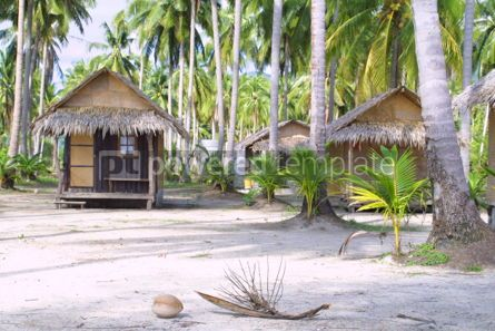 Architecture : Exotic beach with huts and coconut palms on a Chang island Thai #07445