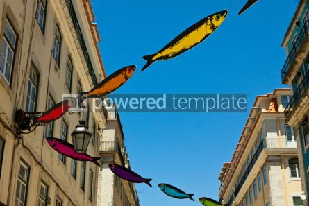 Arts & Entertainment: Streets decorated with sardines during Lisbon Festival #07587