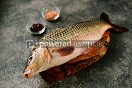Food & Drink: Fresh live raw carp. Fresh river fish. Wild fish. #07591