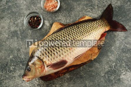Food & Drink: Fresh live raw carp. Fresh river fish. Wild fish. #07592