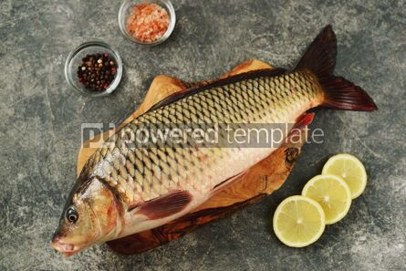 Food & Drink: Fresh live raw carp. Fresh river fish. Wild fish. #07593