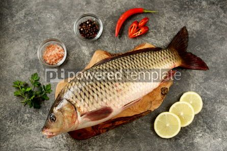 Food & Drink: Fresh live raw carp. Fresh river fish. Wild fish. #07597