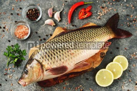 Food & Drink: Fresh live raw carp. Fresh river fish. Wild fish. #07598