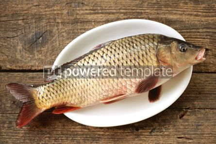 Food & Drink: Fresh live raw carp. Fresh river fish. Wild fish. #07599