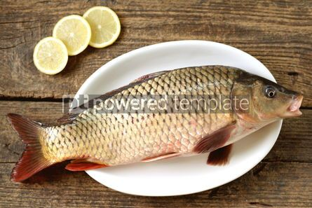 Food & Drink: Fresh live raw carp. Fresh river fish. Wild fish. #07601