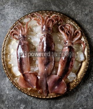 Food & Drink: Fresh raw whole squids on a cupronickel dish with ice. Healthy food. #07608