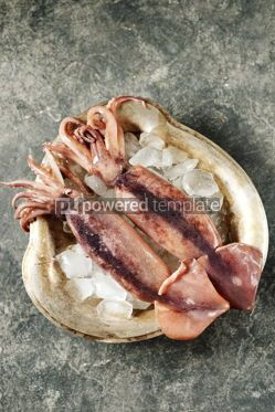 Food & Drink: Fresh raw whole squids on a cupronickel dish with ice. Healthy food. #07611