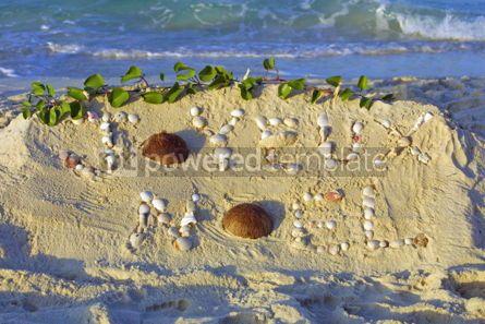 "Nature: Inscription ""Joyeux Noel"" on a sand #07660"