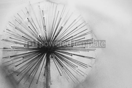 Nature: Circle fountain in the park b/w #07661
