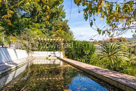 Nature: Botanical Garden (Jardin Botanico La Concepcion) in Malaga Spai #07671