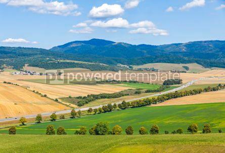 Nature: Rural summer landscape in Eastern Slovakia #07721