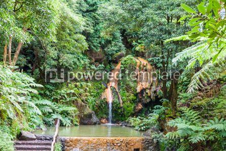 Nature: Natural Park Caldeira Velha on Sao Miguel island Azores Portug #07862