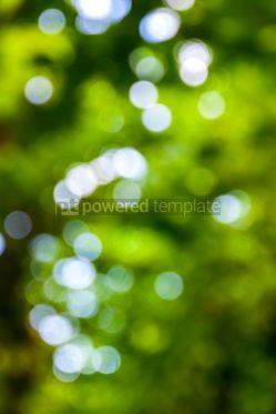 Abstract: Abstract circular green bokeh background #07873