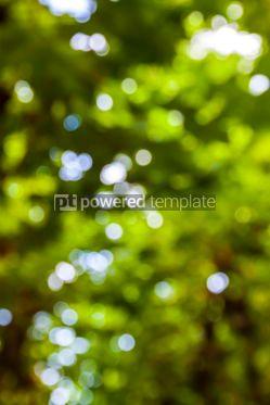 Abstract: Abstract circular green bokeh background #07874