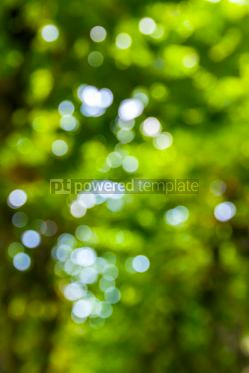 Abstract: Abstract circular green bokeh background #07875