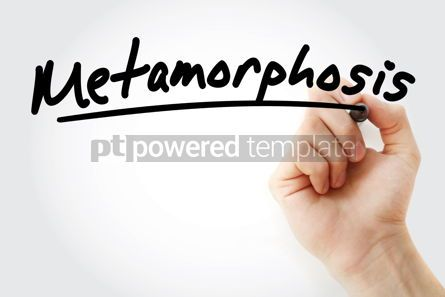 Business: Hand writing Metamorphosis with marker #08333