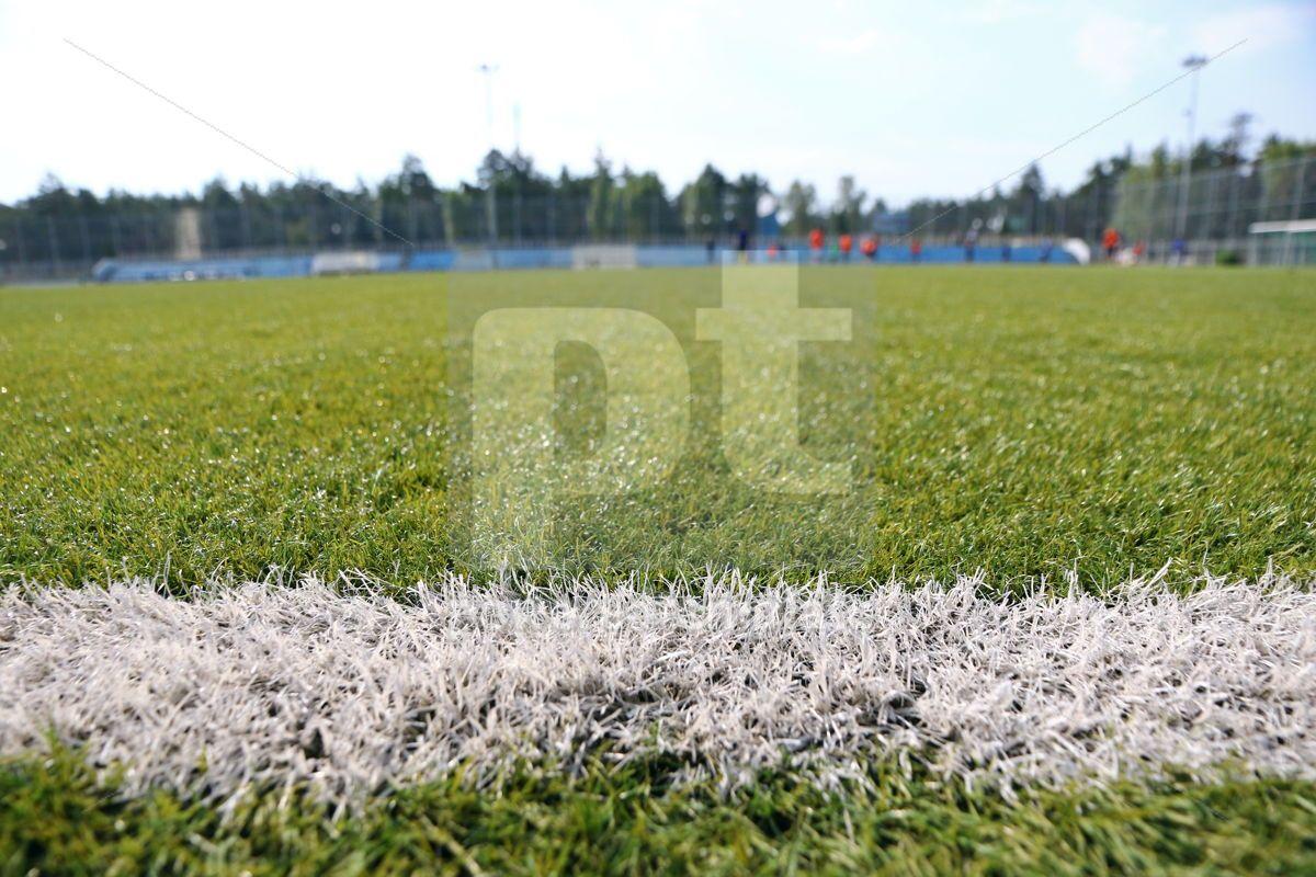 Close-up synthetic grass for football (soccer) sport field, 08689, Sports  — PoweredTemplate.com