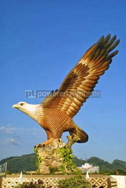 Architecture : Eagle sculpture in Kuah town Langkawi Malaysia #08705