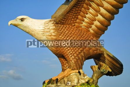Architecture : Eagle sculpture in Kuah town Langkawi Malaysia #08706