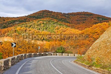 Transportation: Colourful curving autumn road #09314