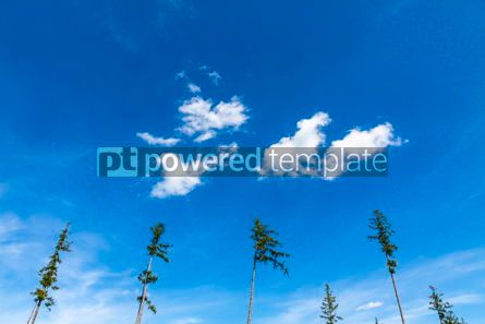 Nature: Blue sky background with white tiny clouds #09787