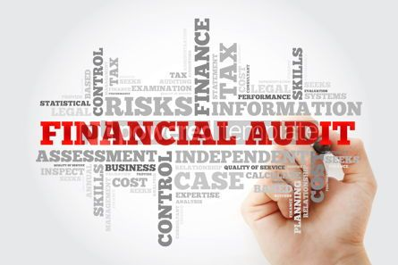 Business: Financial Audit word cloud with marker business concept backgro #10382
