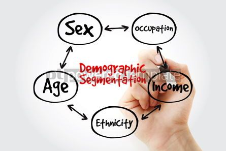 Business: Hand writing with marker Demographic segmentation mind map flowc #10607