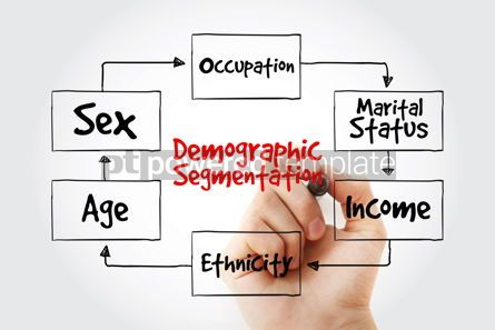 Business: Hand writing with marker Demographic segmentation mind map flowc #10609