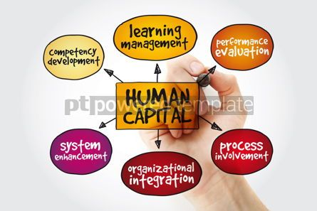 Business: Human capital mind map with marker business management strategy #11207