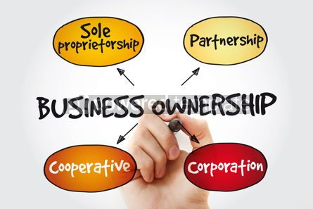 Business: Business ownership mind map with marker concept background #11343