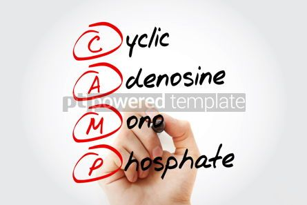 Education: CAMP - Cyclic Adenosine MonoPhosphate acronym with marker conce #11589
