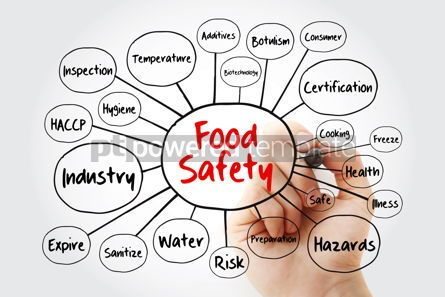 Business: Food safety mind map flowchart with marker concept for presenta #11908