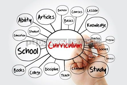 Business: Curriculum mind map flowchart with marker education concept for #11935