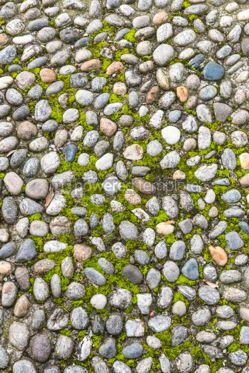 Nature: Surface of vintage pebble pavement #12275