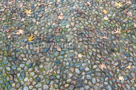 Nature: Surface of vintage pebble pavement #12276