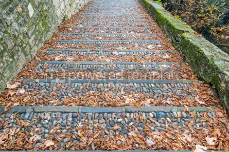 Abstract: Vintage stone steps covered with fallen leaves #12413
