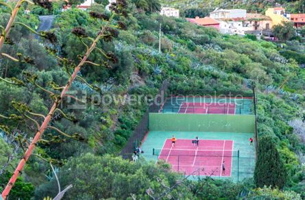Sports: Tennis courts #12420