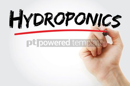 Business: Hydroponics text with marker #13184