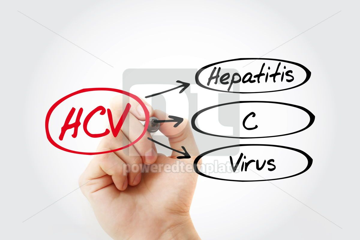 HCV - Hepatitis C virus acronym health concept background, 13261, Education — PoweredTemplate.com