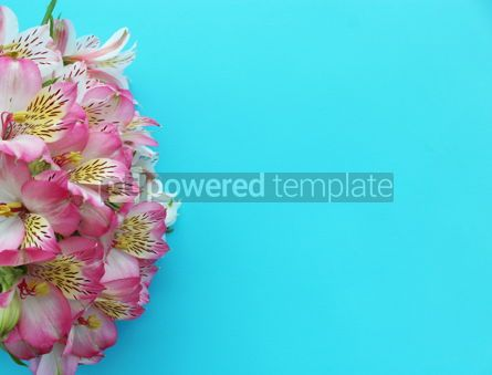 Holidays: Pink alstroemeria flowers on light blue background #13313