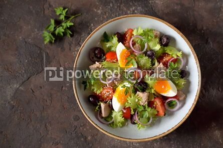 Food & Drink: Healthy organic lettuce salad with canned tuna #13746