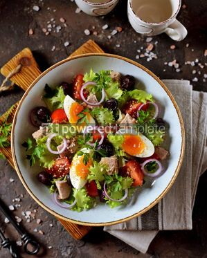 Food & Drink: Healthy organic lettuce salad with canned tuna #13749