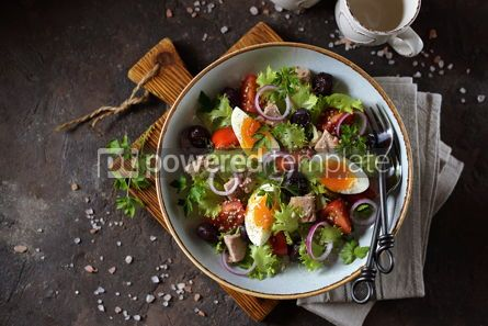 Food & Drink: Healthy organic lettuce salad with canned tuna #13751