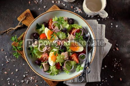 Food & Drink: Healthy organic lettuce salad with canned tuna #13752