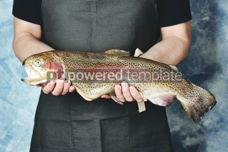 Food & Drink: Raw wild whole trout salmon in male hands #13849