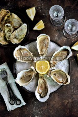 Food & Drink: Fresh oysters on a large sea salt with lemon #13883