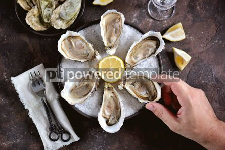 Food & Drink: Fresh oysters on a large sea salt with lemon #13884